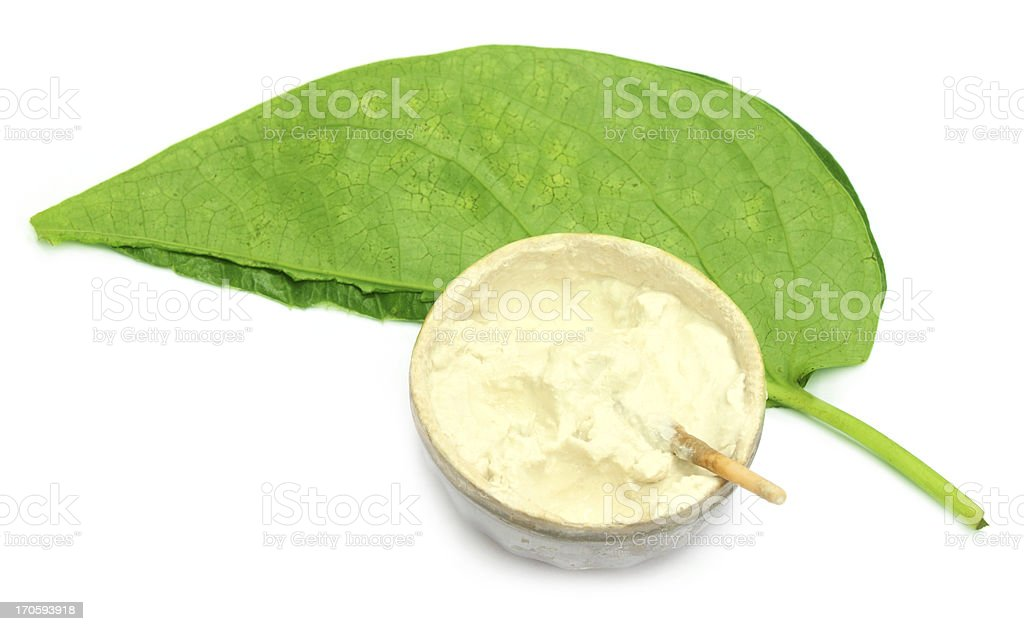 Betel leaf with oyster lime royalty-free stock photo