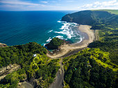 Aerial view of Bethells Beach, Auckland / New Zealand