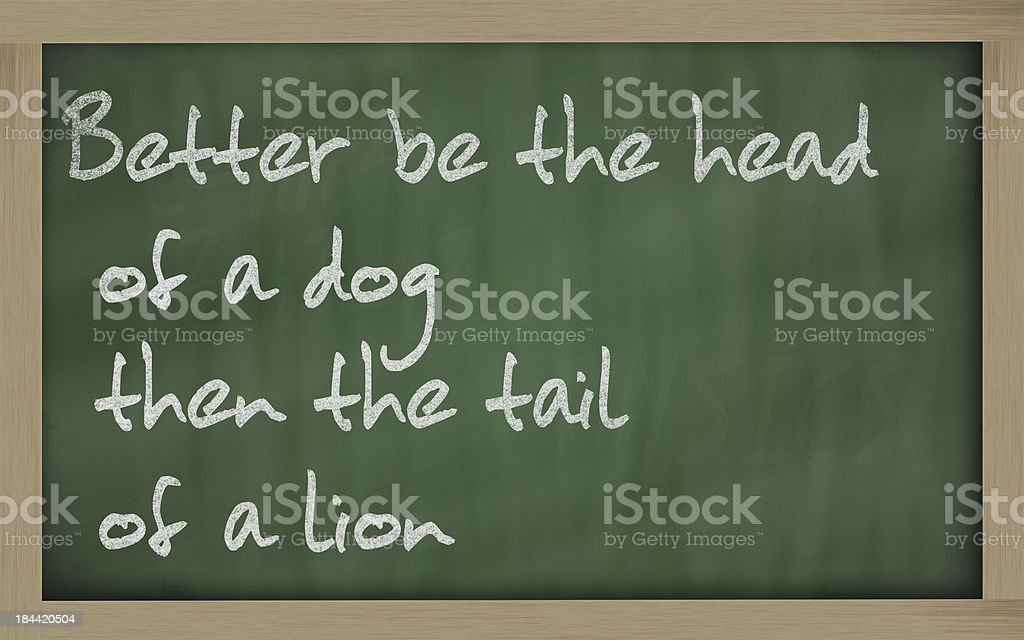 Better be the head dog than tail of lion stock photo