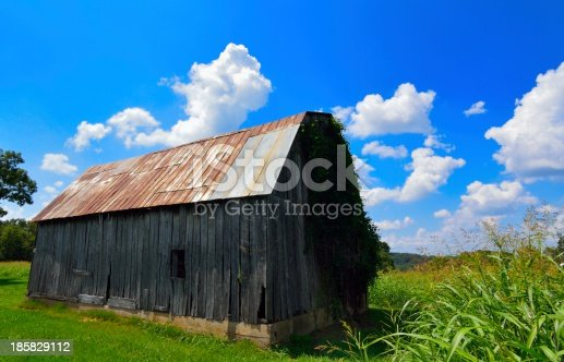 three quarter's view of hay barn in late summer