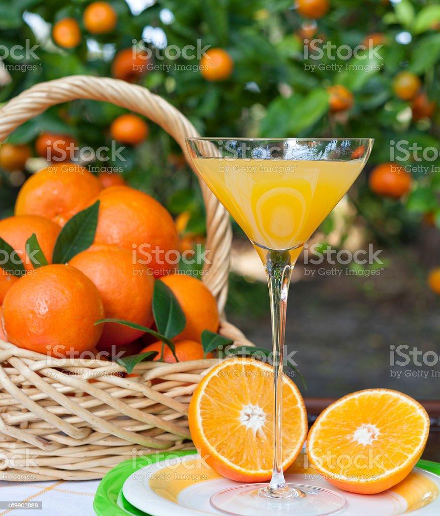 Better Than Champagne Orange Juice stock photo