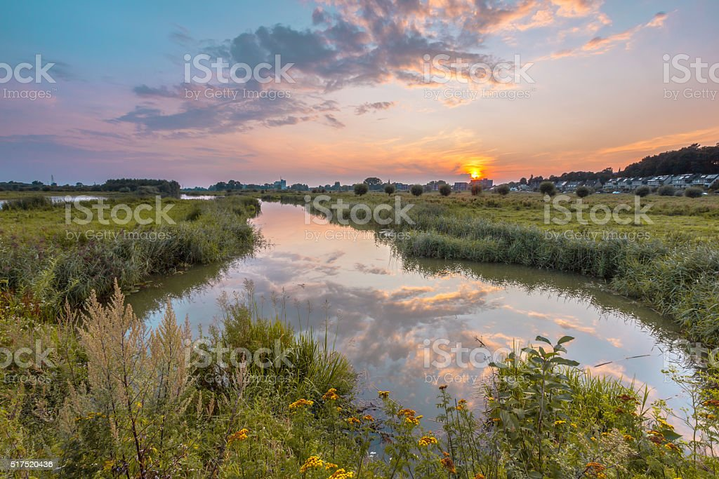 Betuwe River forelands stock photo