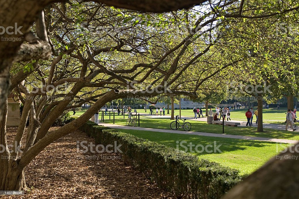 Between classes with grass and trees and students stock photo