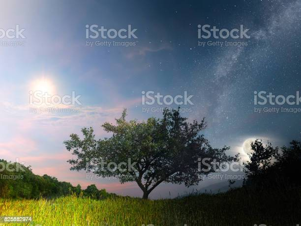 Photo of Between day and night