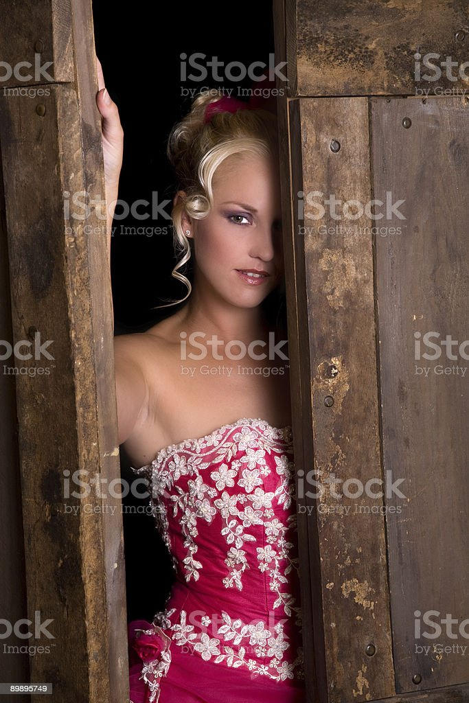 Between the barndoors royalty-free stock photo