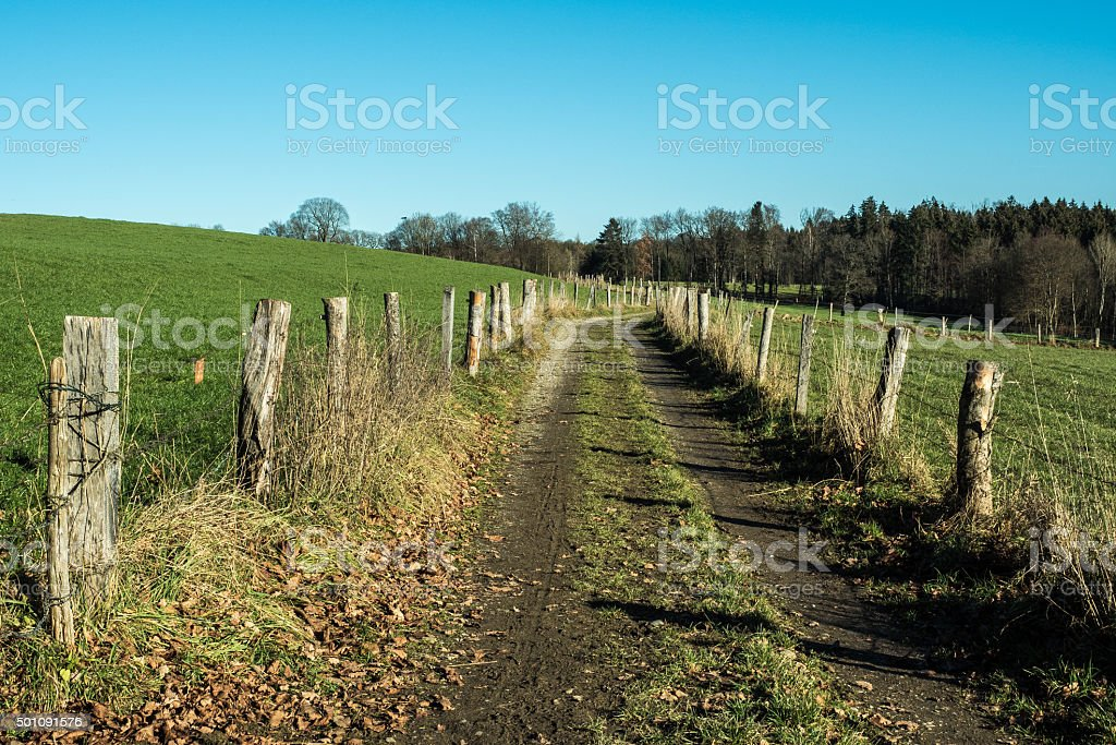 Between the fences stock photo