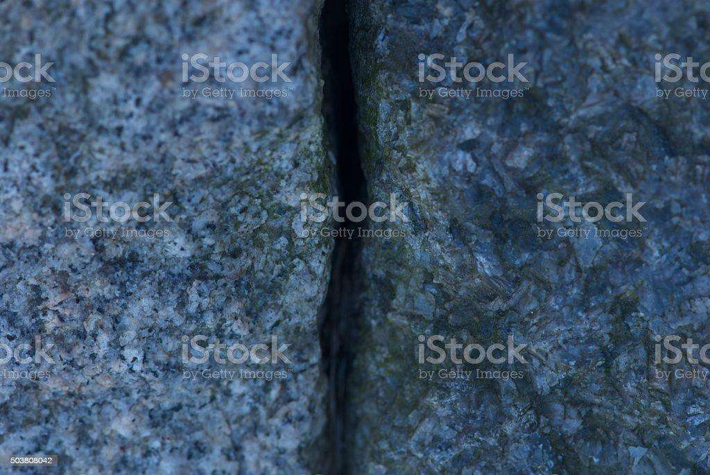 Between two cobblestones stock photo