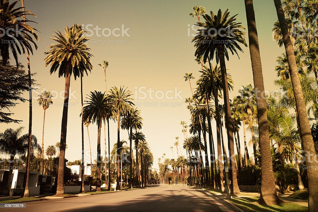 Beverly Drive street in Beverly Hills stock photo