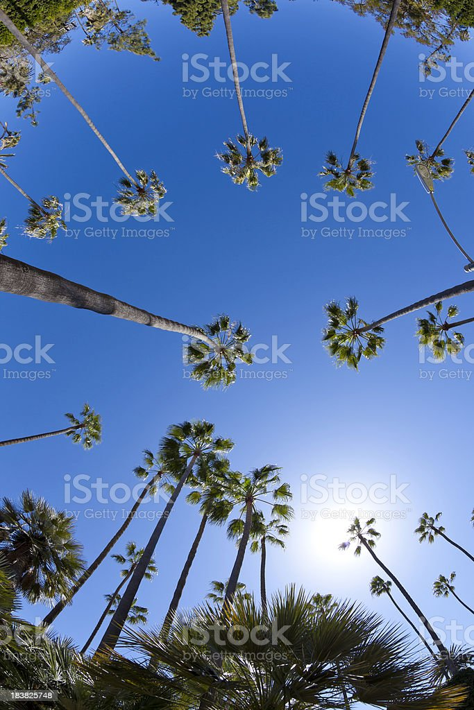 Beverly Hills stock photo