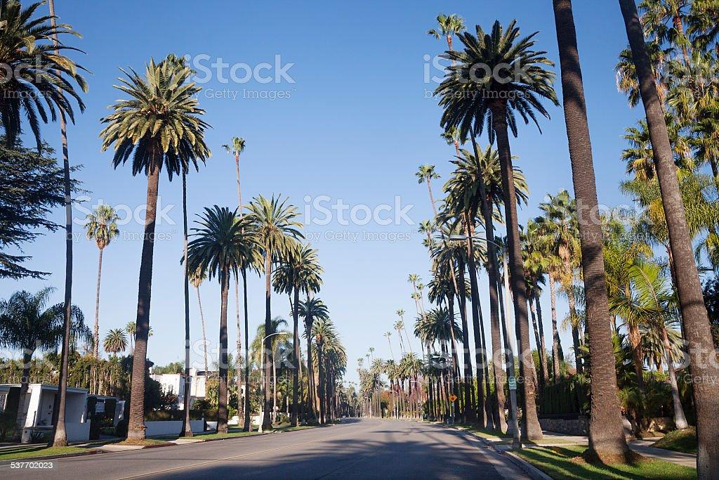 Beverly Hills street stock photo