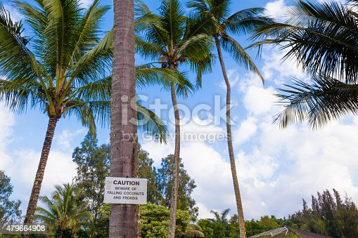 628409126istockphoto Beware of falling coconuts sign 479664908
