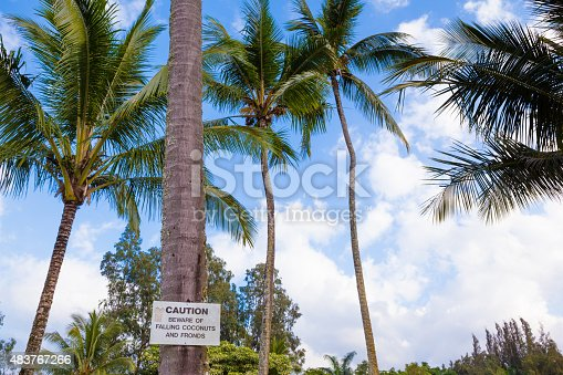 628409126istockphoto Beware of falling coconuts sign 483767266