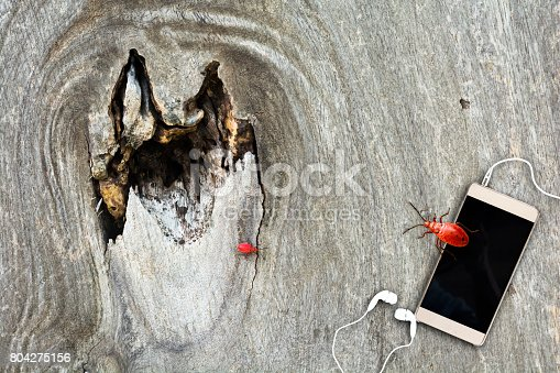 istock Beware of security on cell phones. 804275156