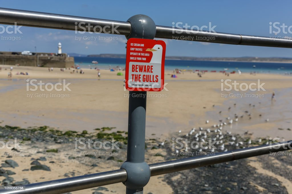Beware the seagulls sign stock photo