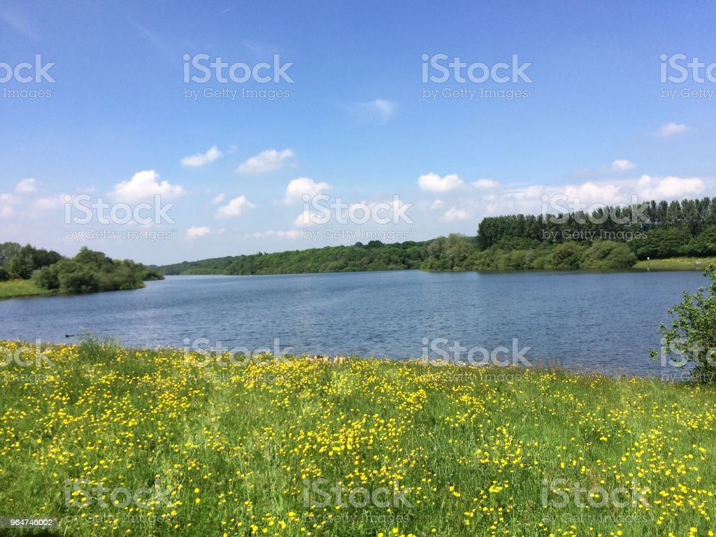 Bewl Water in Kent royalty-free stock photo