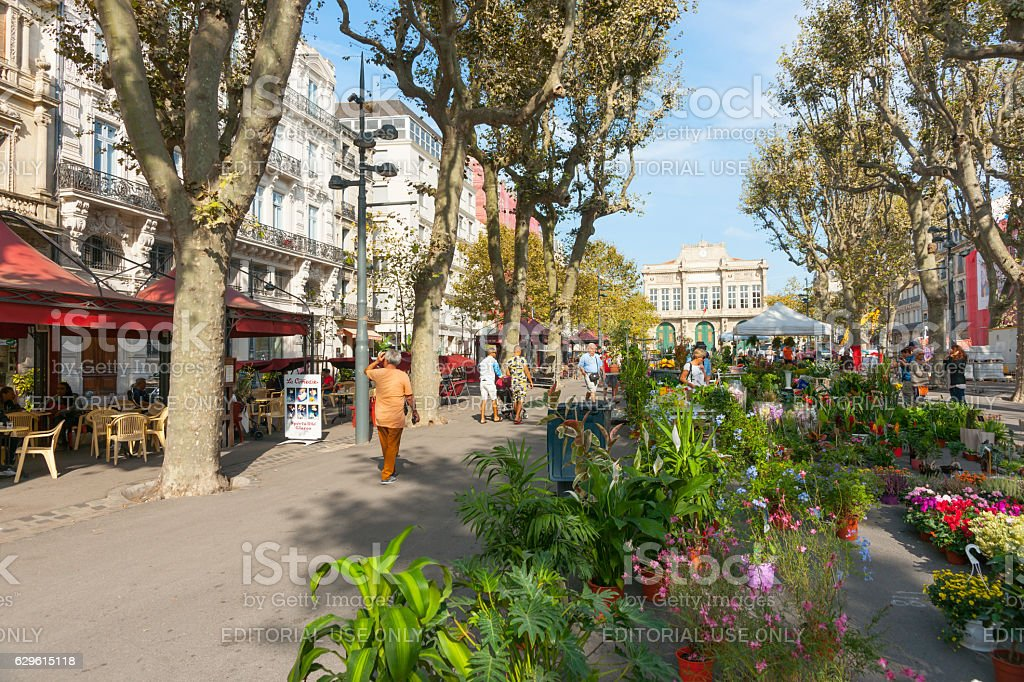 Beziers street scene, Allées Paul Riquet on market day, people stock photo