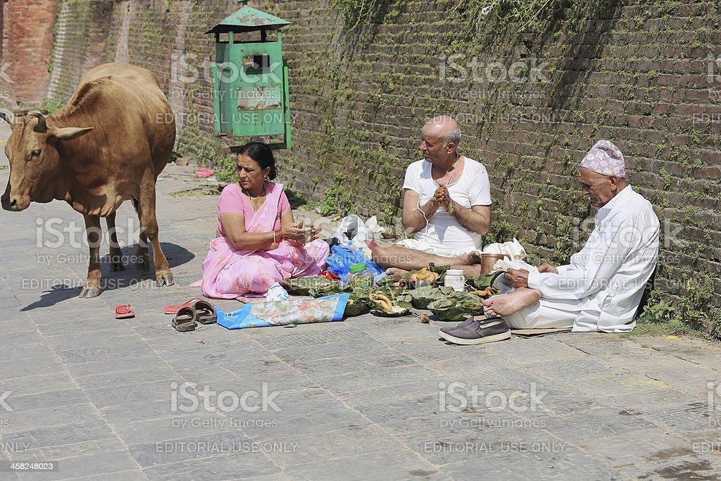 Bhatta priest-hindu faithfuls and cow. Pashupatinath temple-Deopatan-Kathmandu-Nepal. 0282 stock photo