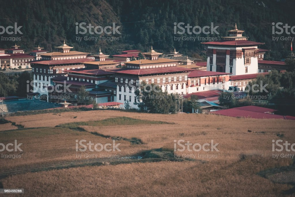 bhutan houses in from of padi field