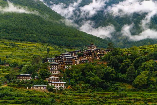 Bhutanese village near the river at Punakha, Bhutan stock photo
