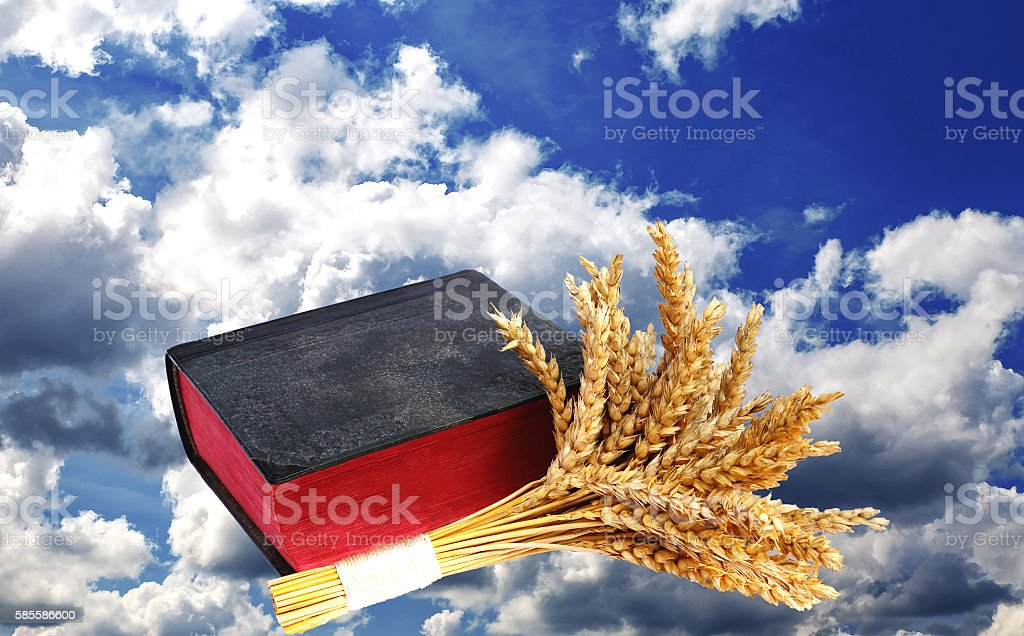 Bible and ears of wheat on a sky background stock photo