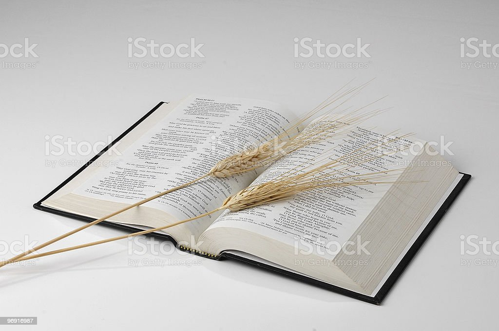 Bible and Wheat on neutral background royalty-free stock photo