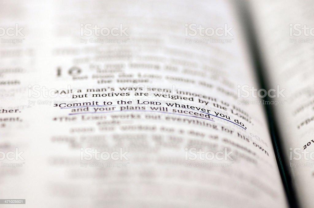 Bible Closeup royalty-free stock photo