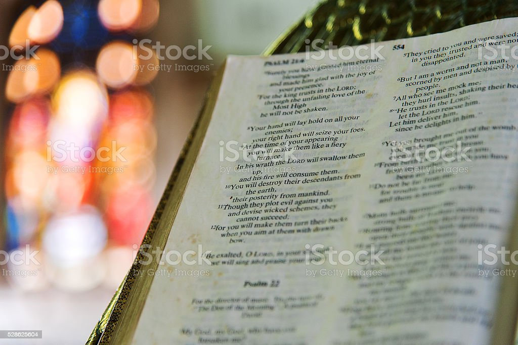 Libro de lectura - foto de stock