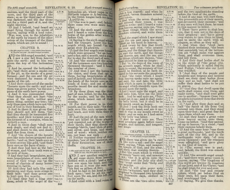 Hi-res of an antique bible open to Revelations.