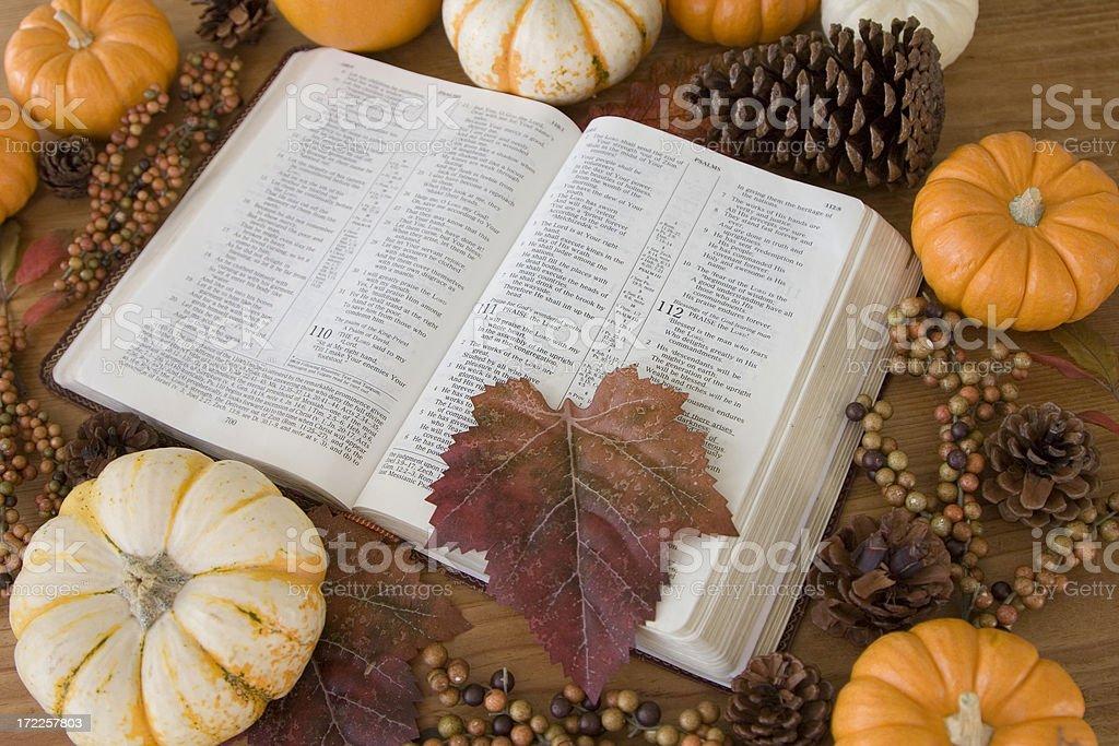 Bible (Autumn 1 of 9) royalty-free stock photo
