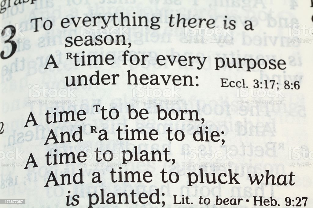Bible Scripture Ecclesiastes royalty-free stock photo