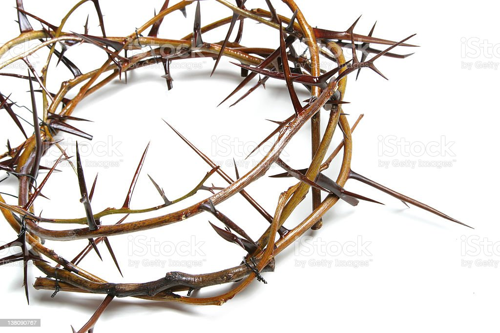 Bible Series Close-up Crown of Thorns royalty-free stock photo