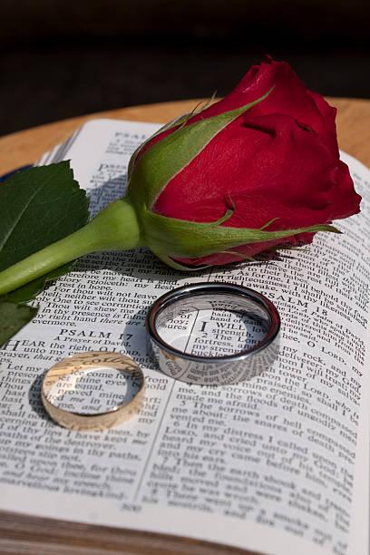 bibel mit hochzeit ringe und eine rose - verse zur hochzeit stock-fotos und bilder