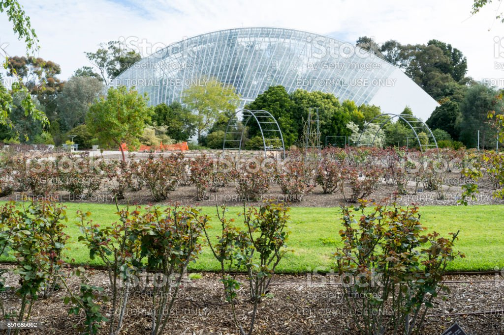 Bicentennial Conservatory and Rose Garden, Adelaide Botanic Garden, South Australia stock photo