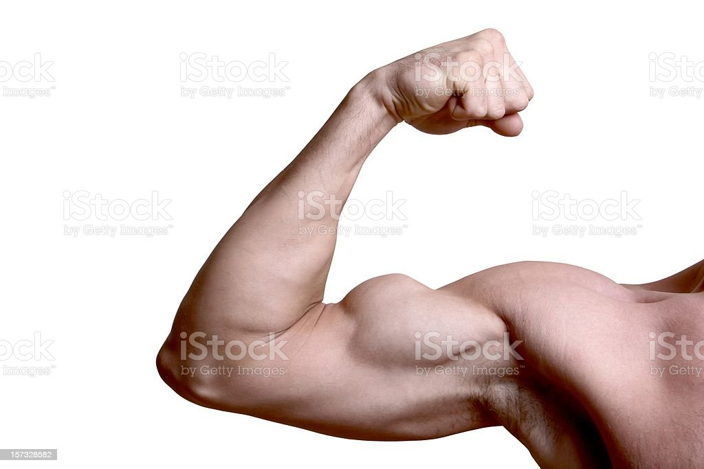 Bicep isolated royalty-free stock photo