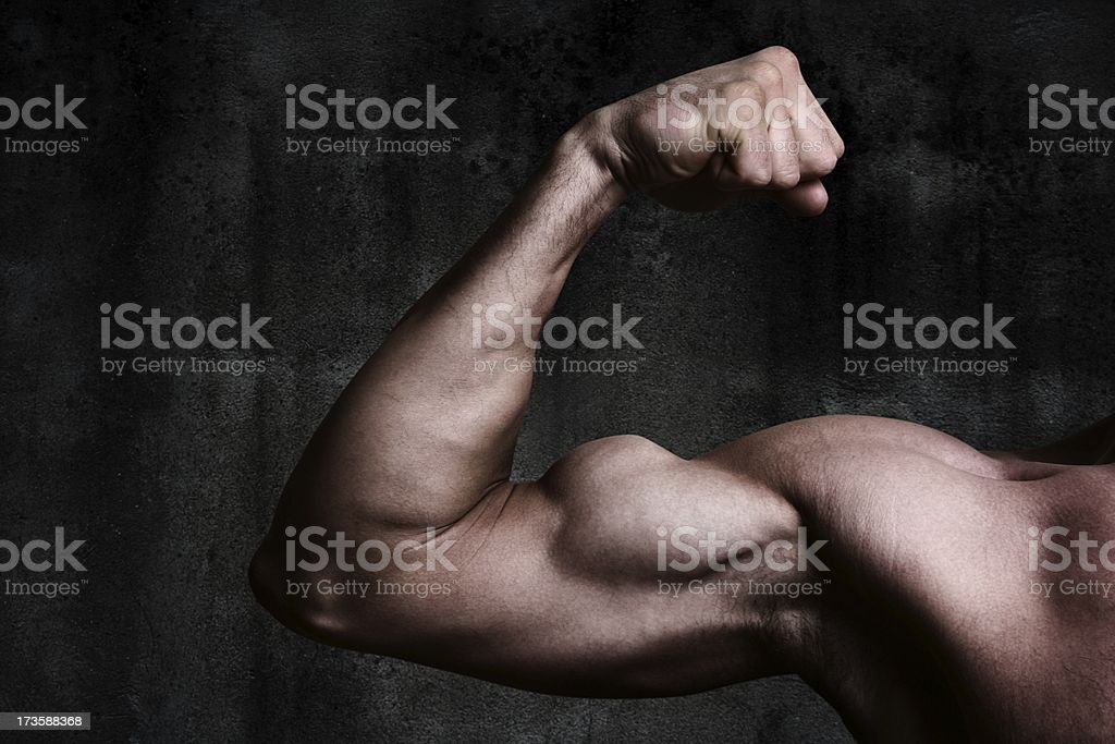 Bicep on dirty wall royalty-free stock photo