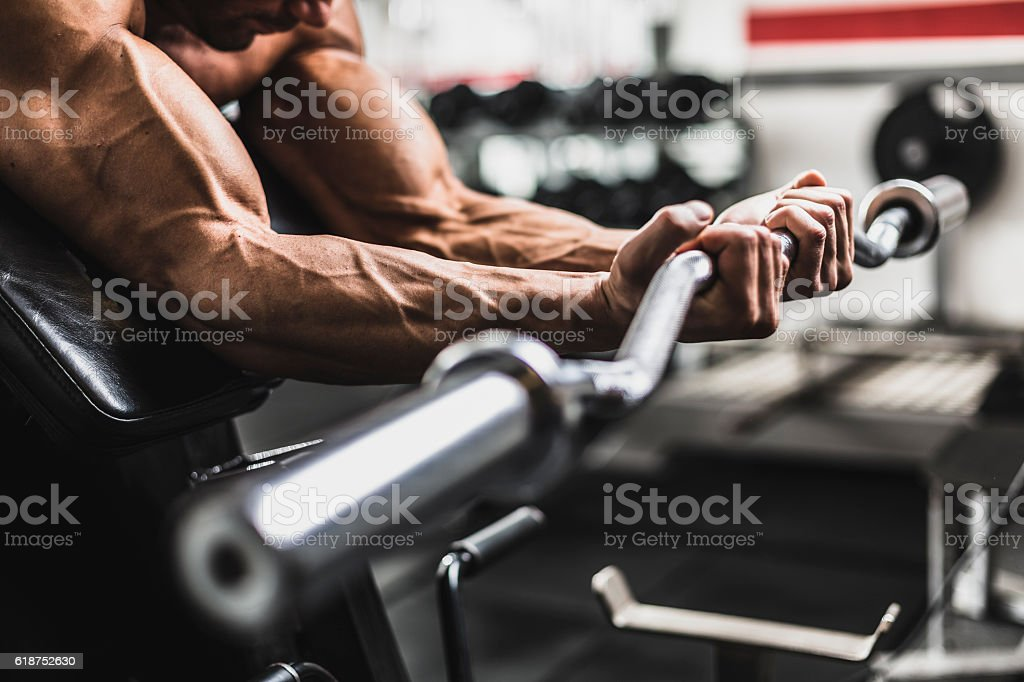 Biceps Workout at Gym stock photo