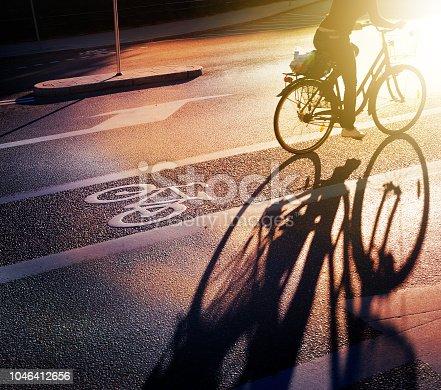 667005568 istock photo Bicycle and bike lane symbol in fall sunset 1046412656