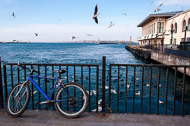 bicycle and birds stock photo