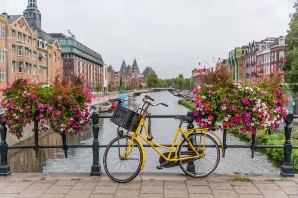 자전거와 여름 날에 암스테르담 네덜란드 운하에 다리에 꽃 - 암스테르담 뉴스 사진 이미지