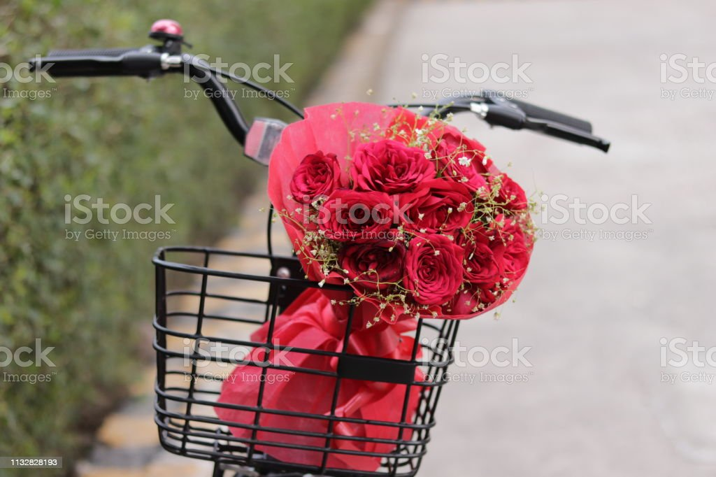 Bicycle basket filled with fresh and romantic red roses bunch,...