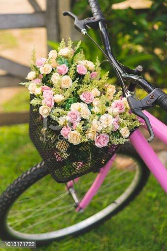 Bicycle Basket, Field, Meadow, Flower, Bicycle