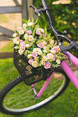 Bicycle Basket, Field, Meadow, Flower, Bicycle