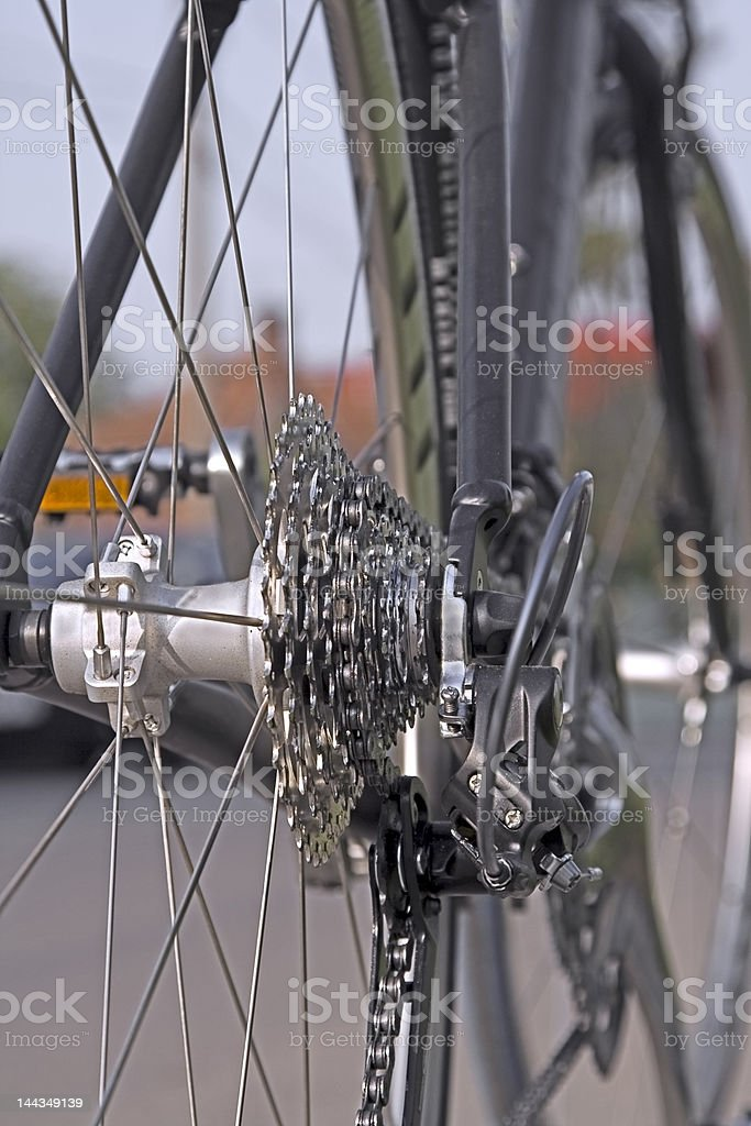 Bicycle gears royalty-free stock photo
