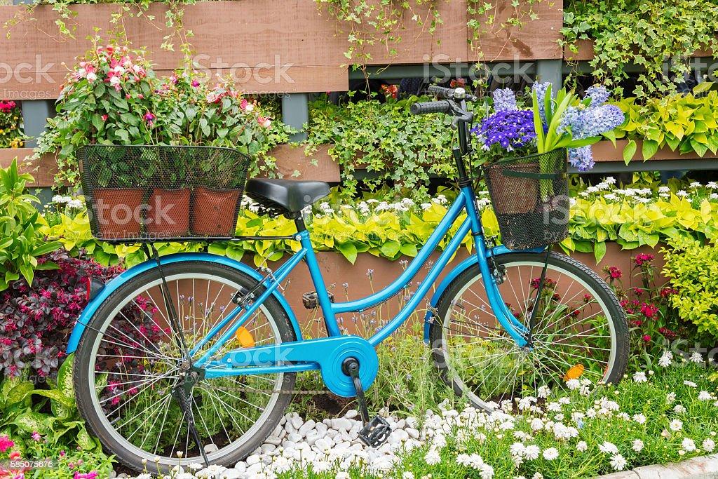 Велосипед в сад стоковое фото