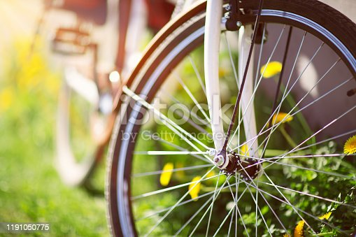 bicycle in the forest in spring at evening with beautiful sunlight