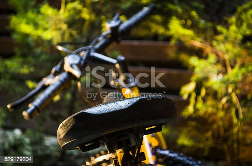 istock Bicycle is a solution for a healthy life 829179204