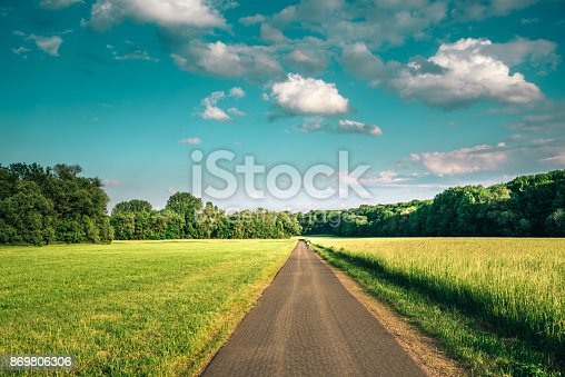 Bicycle Lane along meadow surrounded by forest