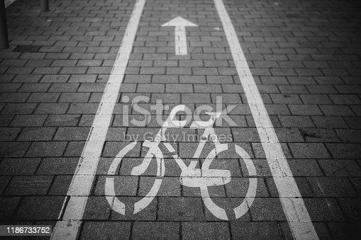 667005568 istock photo Bicycle lane 1186733752