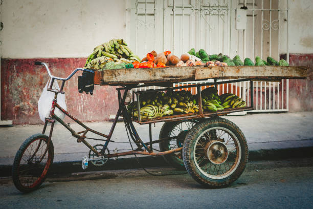 bicycle loaded with fruits in cuba stock photo