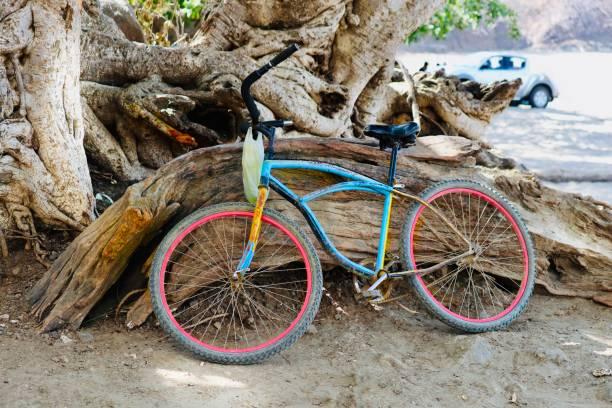 vélo sur la plage - josianne toubeix photos et images de collection